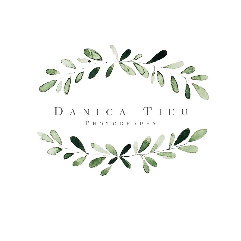 danica-updated-logo