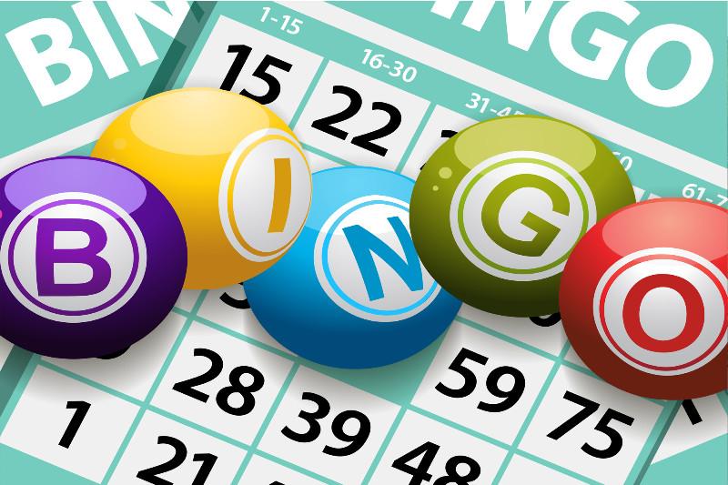 bingo-too