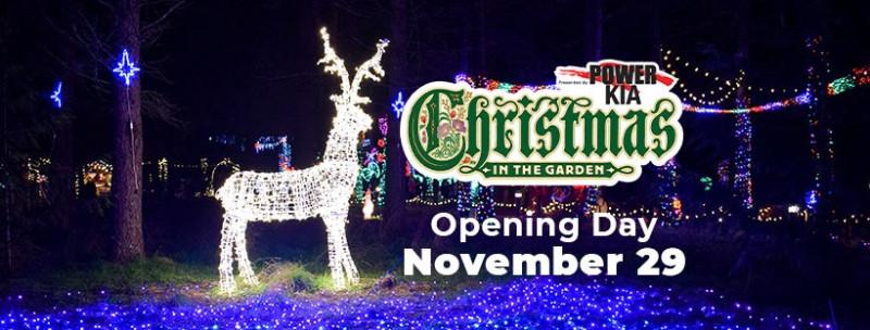 christmas-in-the-garden