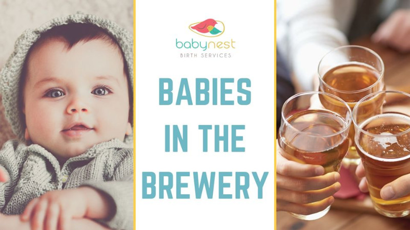 babies-in-the-brewery